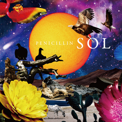 SOL Type-A