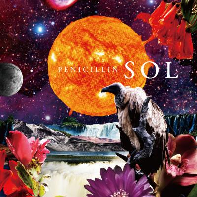 SOL Type-C
